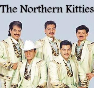 http://www.onantzin.com/images/news_stories/northern_kitties.jpg