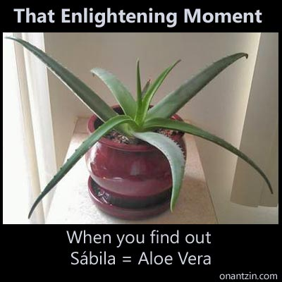 Meme - That enlightening moment when you find out Sábila = Aloe Vera